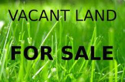 vacantland1516888094